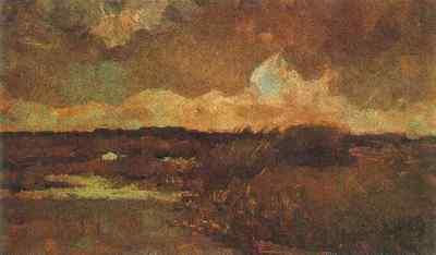 Marshy Landscape