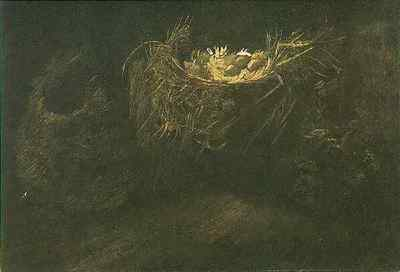still life with three birds nests version