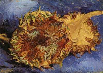 two cut sunflowers version