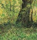 undergrowth version