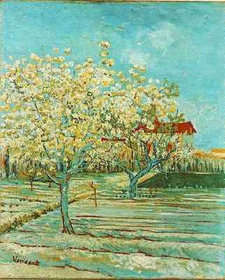 orchard in blossom version