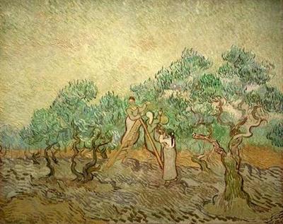 olive picking version