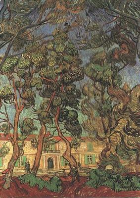 Trees in the Garden of Saint Paul Hospital