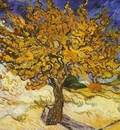 Mulberry Tree, The