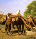 Jean Leon Gerome Camels At The Trough