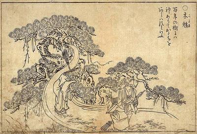 Kodama2
