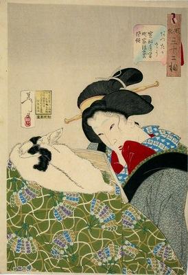 yoshitoshi looking warm fuzoku sanjuniso no