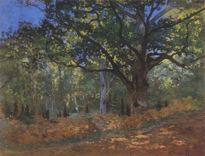 Le Bodmer Oak, Forest of Fontainebleu [1865]
