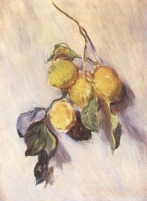 Branch from a Lemon Tree Door A [1884]