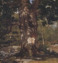 The Bodmer Oak [1865]