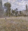 A Meadow [1879]