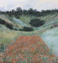 Poppy Field in a Hollow near Giverny [1885]