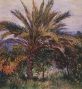 A Palm Tree at Bordighera [1884]