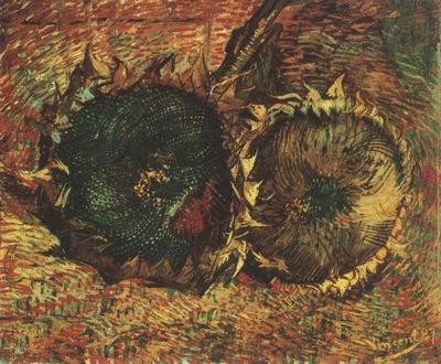 two cut sunflowers, paris