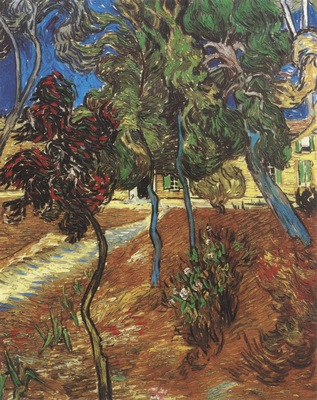 trees in the garden of the saint pauls hospital, saint remy