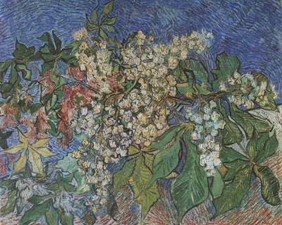 blossoming chestnut branches, auvers sur oise