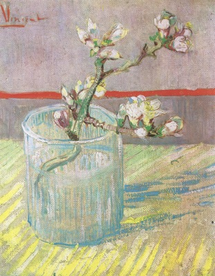 branch almond blossom in a glass, arles