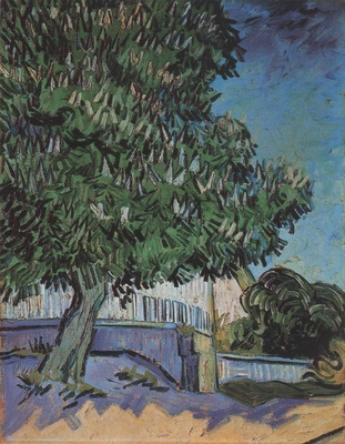chestnut tree in blossom, auvers sur oise