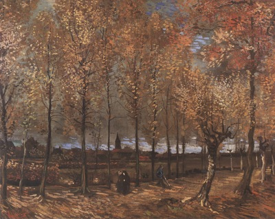 lane with poplars, nuenen