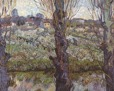 orchard in blossom with view of arles, arles