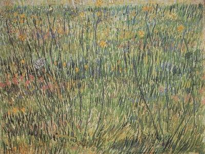 pasture in bloom, paris