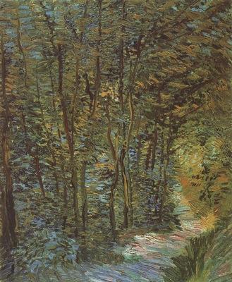 path in the woods, paris