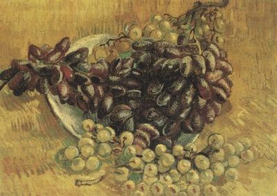 still life with grapes, paris