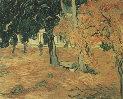 the garden of the saint pauls hospital, saint remy