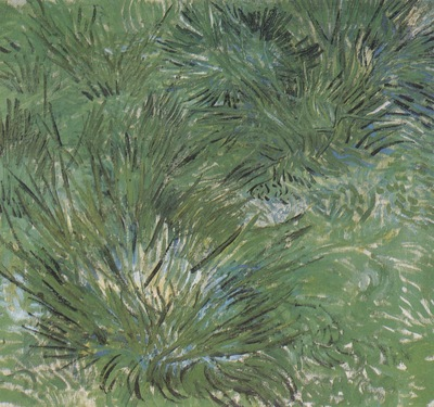 tufts of grass, arles