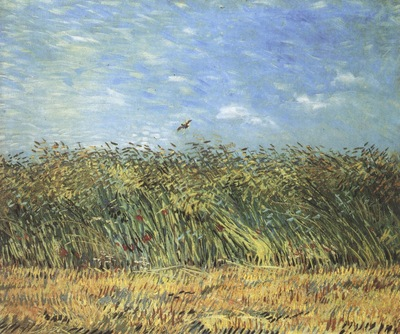 wheatfield with lark, paris