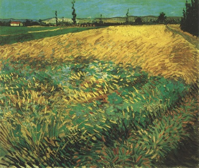 wheatfield with the alpilles foothills in the background, arles