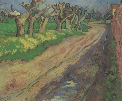 willows pruned, arles
