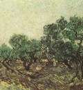 olive harvest, saint remy