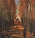 avenue of poplars in autumn, nuenen