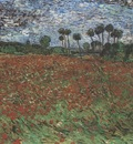field with poppies, auvers sur oise