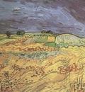 fields, auvers sur oise