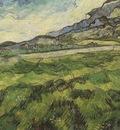 green wheat field, saint remy