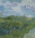 green wheat fields, saint remy