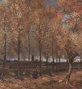 lane with poplars, nuenen