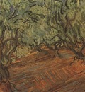 olive grove, saint remy