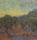 olives, orange sky, saint remy