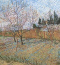 orchard with peach blossom, arles