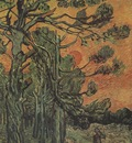 pine trees against red sky with sunset, saint remy