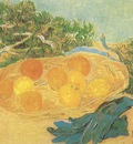 still life oranges, lemons and blue gloves, arles