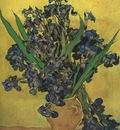 still life vase with irises, saint remy