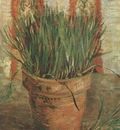 vase with chives, paris