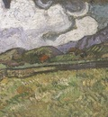 wheat field behind saint pauls hospital, saint remy