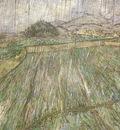wheat field in rain, saint remy
