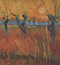 willows at sunset, arles