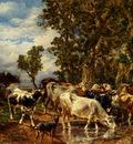 Jacque Charles Emile Troupeau De Vaches A L Abreuvoir
